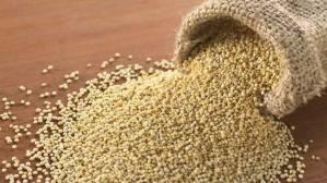 web-quinoa-0116